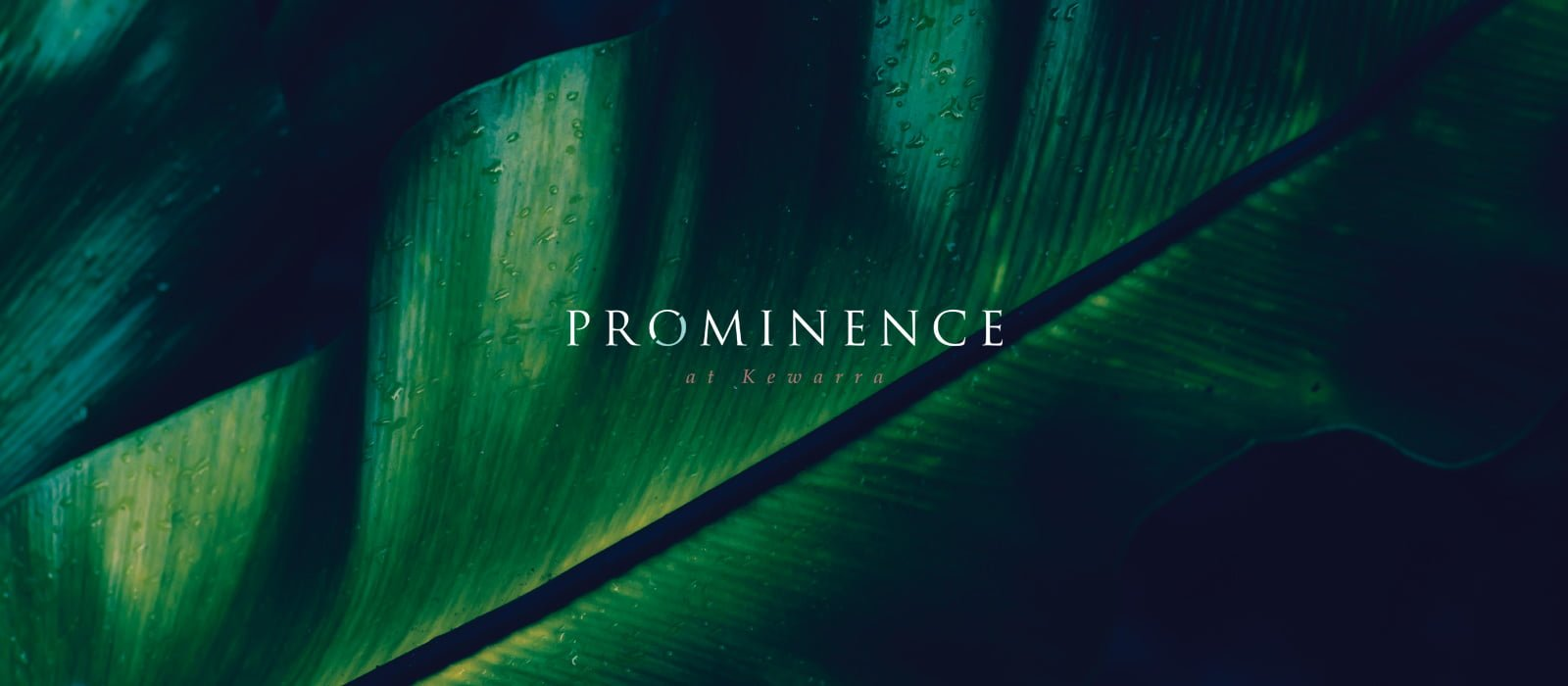 Prominence Brand by Zephyrmedia
